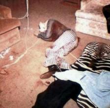 Cadáveres unidos por cuerdas.